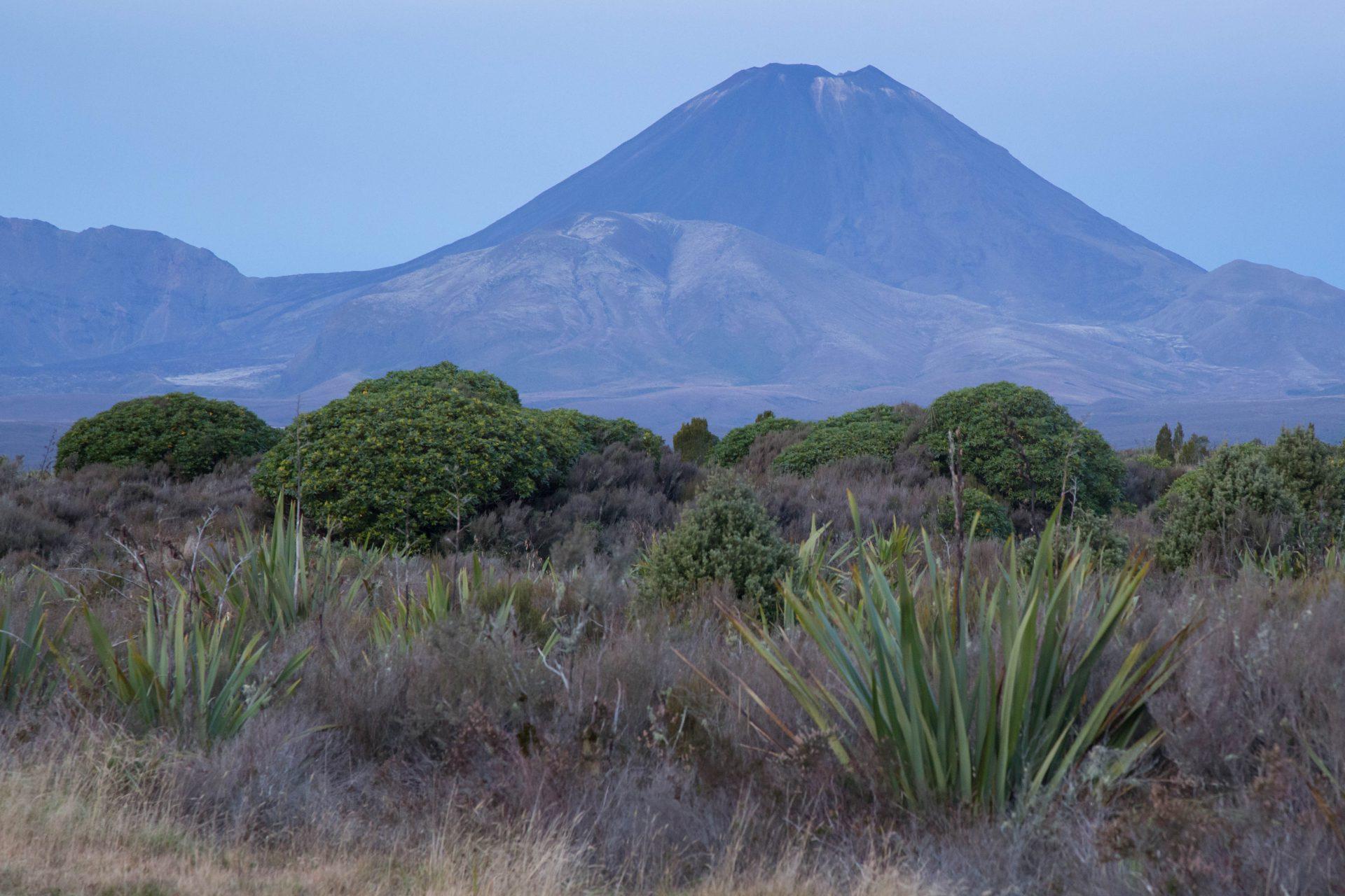 Mt Ngauruhoe (2.291m), Tongariro N.P.