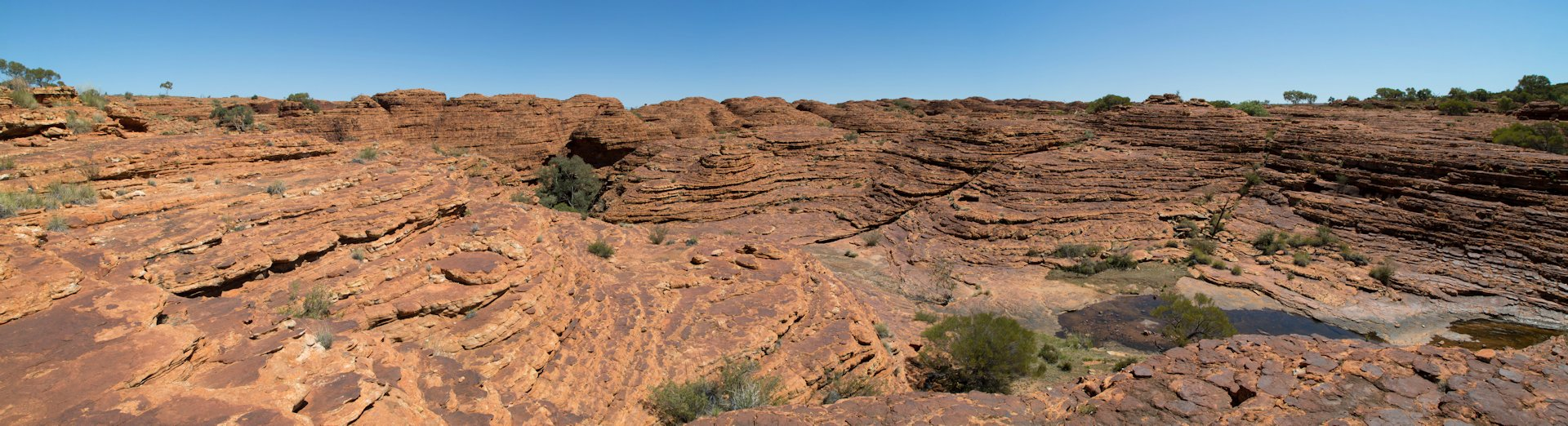 Eroded sandstone landscape, Kings Canyon